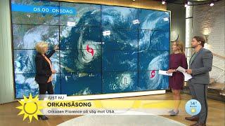 """Orkanen Florence på väg mot USA: """"De boende måste ta sig därifrån"""" - Nyhetsmorgon (TV4)"""