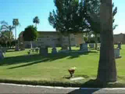 Resthaven Park Cemetery East - Selling Cemetery Lots - YouTube