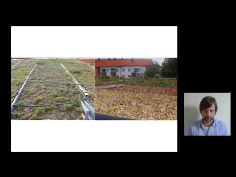 Development of Different Types of Green Roofs & Green Walls for Improved Urban Biodiversity...