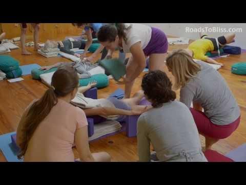 Iyengar Yoga therapy workshop  with Lois Steinberg, Ph.D. Certified Iyengar Yoga Teacher Advanced 2