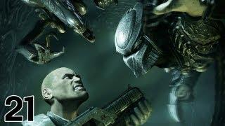 Let's Play - Aliens Vs Predator 3 #21 Igitt Wasser!!! [DE|GER|Uncut|Blind] thumbnail