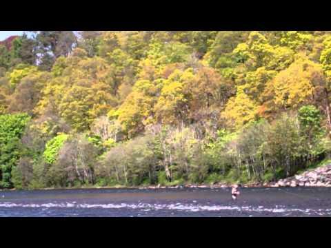 Trout Fishing River Tay Dunkeld Perthshire Scotland May 20th