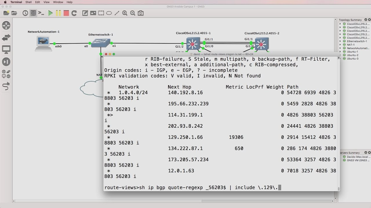Python network automation, BGP and IOS regular expressions (Part 4). Live Internet BGP.