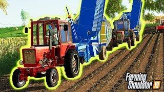Kombajn do Ziemniaków ♀️ Rolnicy z Miasta  Farming Simulator 19