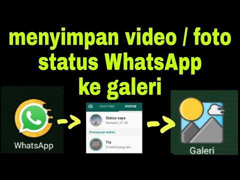 Cara Menyimpan Status Video Foto Whatsapp Ke Galeri Tanpa Aplikasi Tambahan Youtube