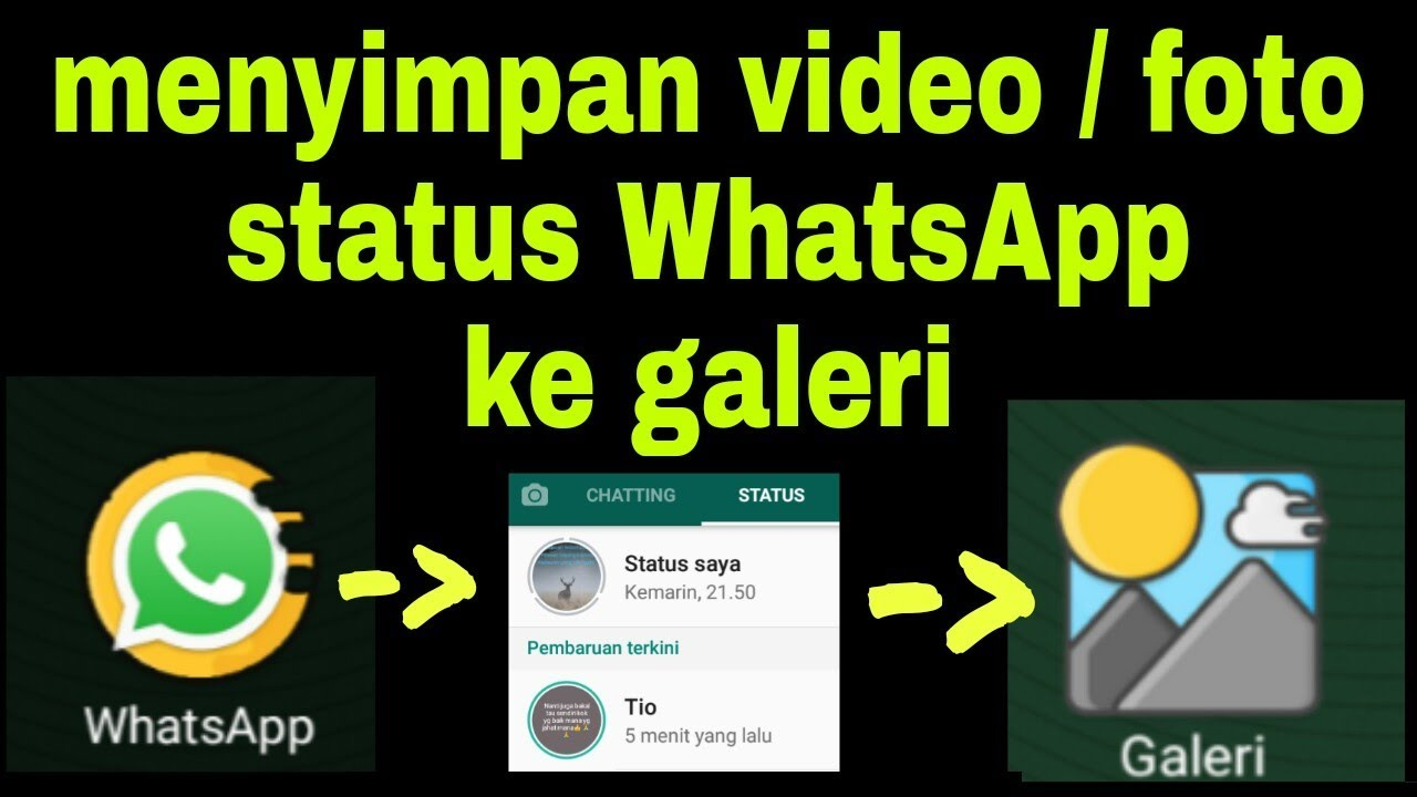 aplikasi mendownload video di wa