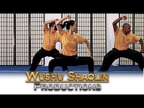 Wushu Shaolin Kung Fu Online Distance Education Course 2012 Free Tutorial