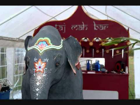 Papier Mache Indian Elephant- Made In Essex!