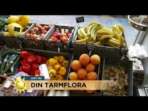 Experten: Hr r maten som rddar magen - Nyhetsmorgon (TV4)