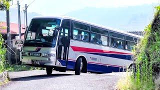 Bus. まるで カーズ の車みたいに坂道を登って、最後に路線バスと離合して行く 大型観光バス  looks like cars