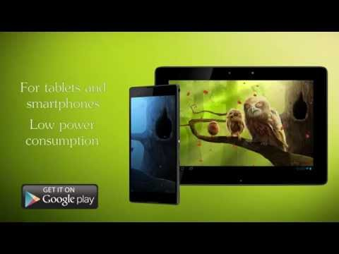 Owls Forest Live Wallpaper For Android
