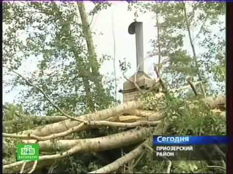 Ураган в п. Сосново