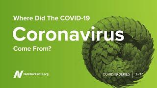 Where Did the COVID19 Coronavirus Come From?