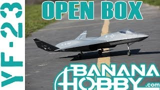 YF-23 BlitzRCWorks | Open Box Review | EDF Fighter Jet