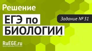 Решение демоверсии ЕГЭ по биологии 2016 | Задание 31. [Подготовка к ЕГЭ (RuEGE.ru)]
