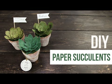 DIY Paper Succulents - Cricut | Cameo
