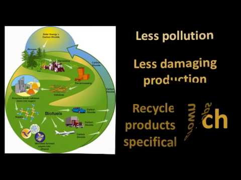 Are Biofuels a Sustainable Alternative to Fossil Fuels?