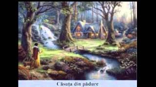 Miruna Pinzaru - Casuta din padure