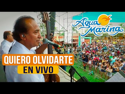 Agua Marina - Quiero Olvidarte (En Vivo)