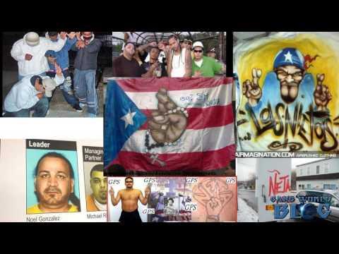 Asociacion Neta Gang Alliance HIstory (Puerto Rico)