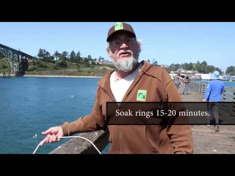 How To Go Crabbing In Oregon