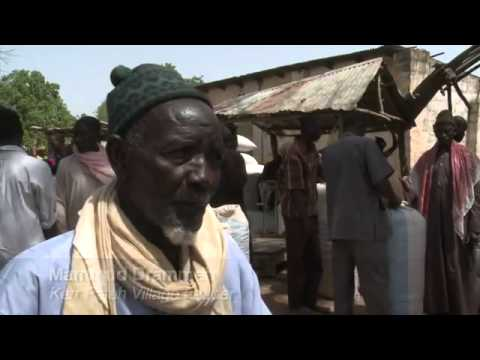 FAO - UN FOOD   AGRICULTURE ORGANIZATION