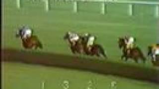 SECRETARIAT - 1973 Man o' War Stakes
