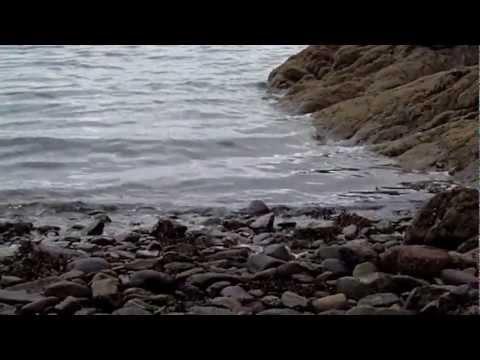Garnish Island (Ilnacullin) Beach (WVGA60)