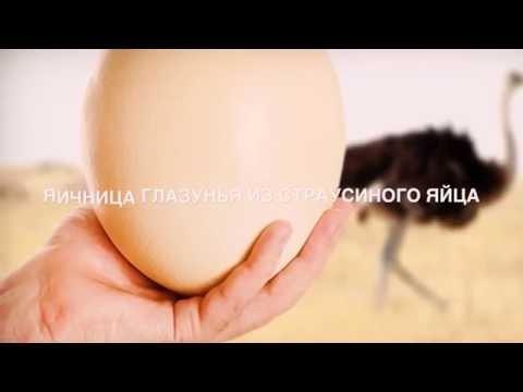 Яичница из страусиного яйца /  Fried eggs of ostrich eggs
