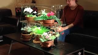 Модульный стелаж-фито-подсветка для рассады и комнатных растений