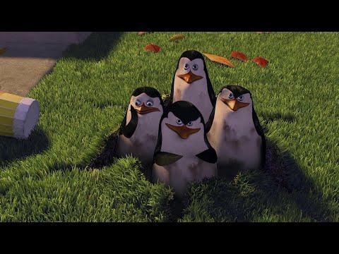 Пингвины не туда попали | Переозвучка мадагаскар