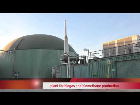 Bioenergy solution to the explotation of agroindustrial waste