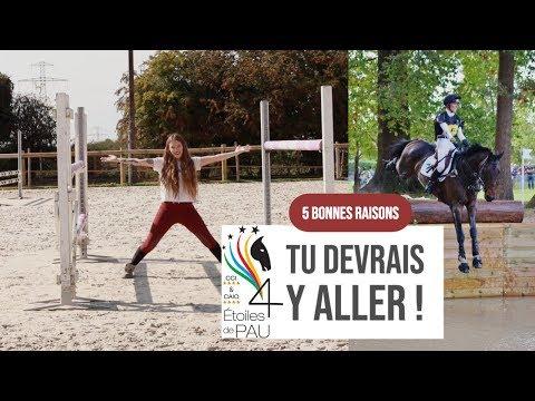 Les ⭐ de Pau : tu y vas ? TU DEVRAIS ! #CCE 🌳🐴 I Georgette ou Taxi ?