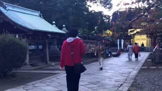 寛永寺五重塔  上野東照宮