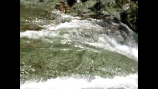 Excursionismo Cenzontle- 1ra. Cascada del Chicol por Acacoyagua