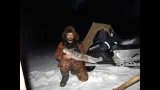 Налим на зимнюю удочку(утро)(Рыбалка на Севере,налим..., 2015-11-23T15:26:27.000Z)