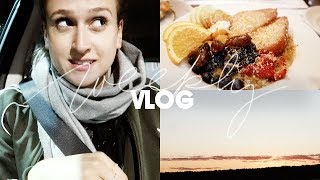 ROADTRIP 2.0 | Consider Cologne Weekly Vlog