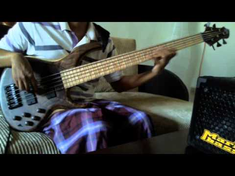 Incubus - Summer Romance (Anti-Gravity Love Song) [bass cover]