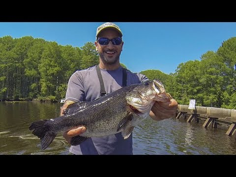 Tidal River Bass Fishing  (Chickahominy/James) Swim Jig & More!!!