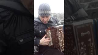 КУЬМИНКИ.На гармони Московский гармонист Николай Воронин.