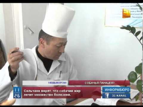 Собачий жир. Купить собачий жир в фито-аптеке Русские корни