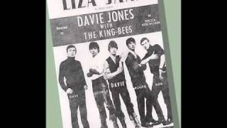 Davie Jones  and The King Bees - Liza Jane