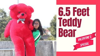 6.5 Feet Teddy Bear Unboxing | Valentine Giant Teddy Unboxing | Best Birthday Gift For Girlfriend