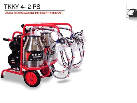 Milking Machine, Milking Equipment (Sheep Milking)