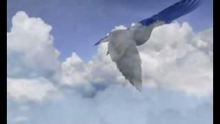 Timofey Bartosz Brenes Vs Terri B Heaven
