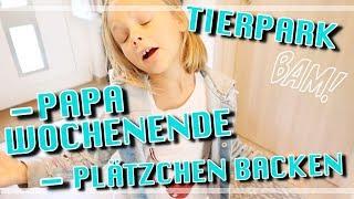 PLÄTZCHEN BACKEN / TIERPARK / PAPA WOCHENENDE