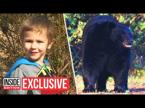 Could a Bear Keep You Safe in the Wild?