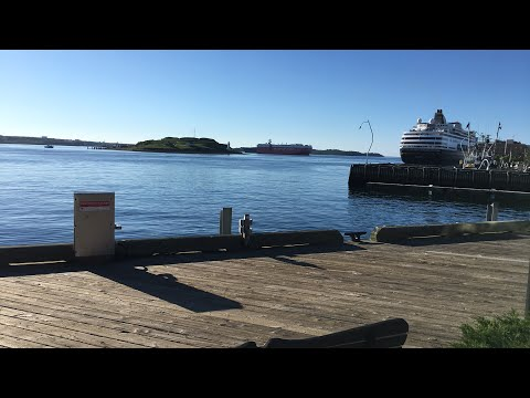 🔴 Busy morning at the Halifax Harbor