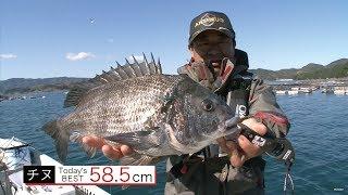 黒潮の恩恵豊かな高知県宿毛湾は養殖が盛ん。今回はイケス周りをカセ釣...