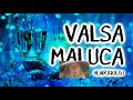 Download Video VALSA MALUCA 2019 MP4,  Mp3,  Flv, 3GP & WebM gratis